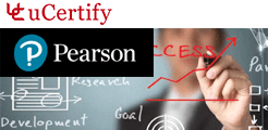 pearson-info-sys-mgmt -  Testprep  lesson