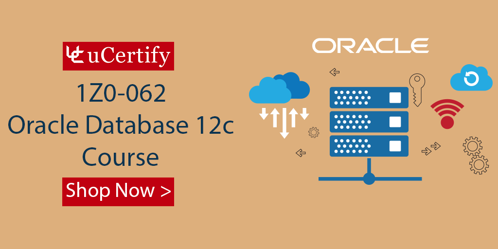 Where Can I Learn The Skills Of Oracle Database?