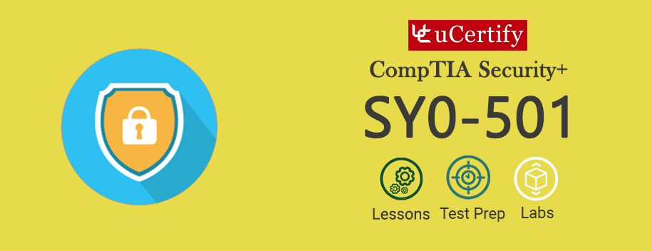 SY0-501 : CompTIA Security+ (Course and Labs)