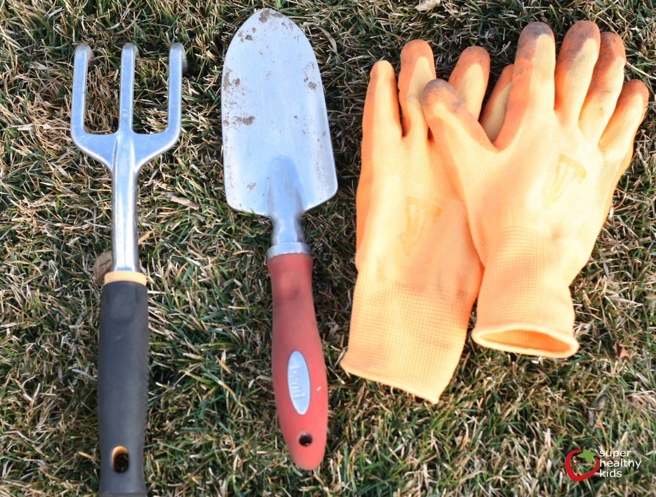 Merveilleux Trowel: This Is The Tool I Use The Most In The Garden. Some Of The Things  You Can Do With A Trowel Include Removing Roots Of Weeds, Splitting Bulbs,  ...