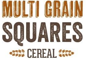 Multi Grain Squares
