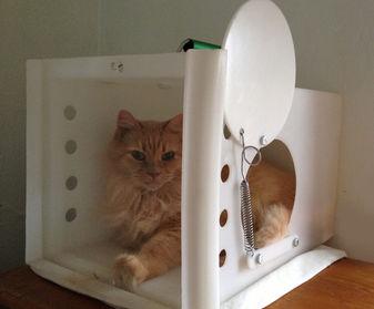 Neighborhood Cats Handler/Den