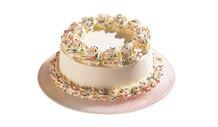 Haagen_dazs_confetti_cake