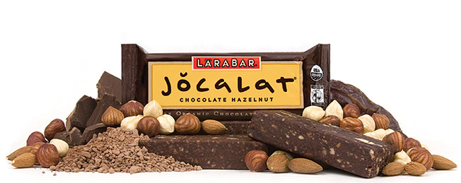 Larabar Organic Chocolate Hazelnut Bar
