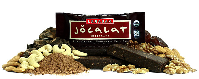 Larabar Organic Chocolate Bar