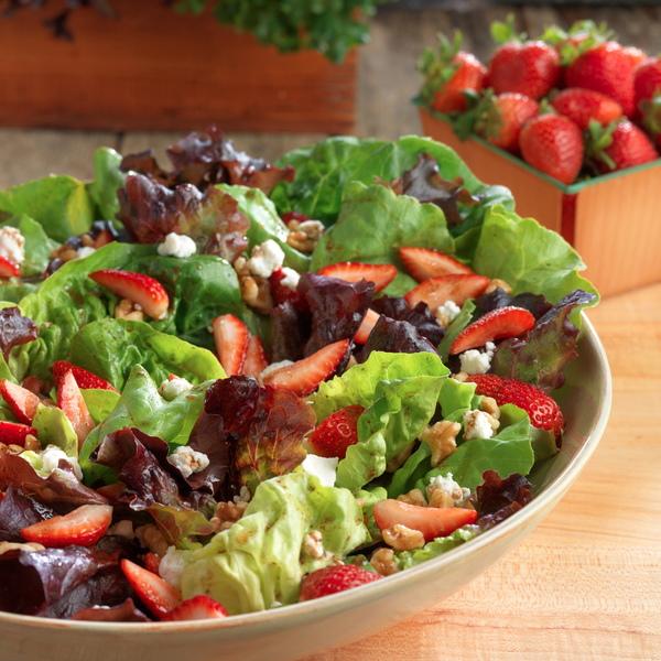 Organic produce sustainable farm earthbound cooking heirloom salad recipe