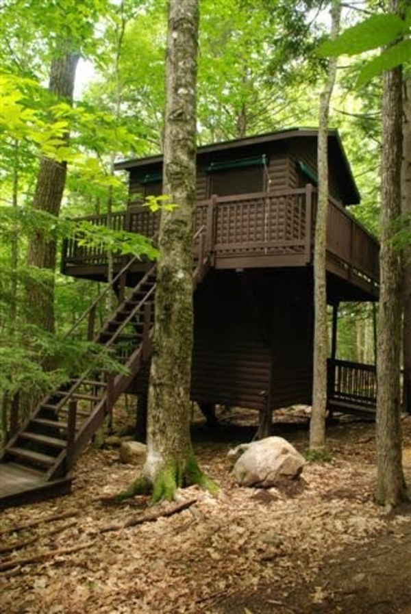 Tree houses 032