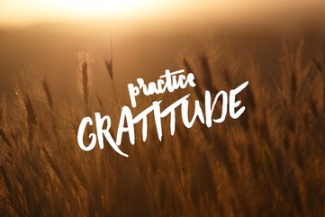Blog body.gratitude