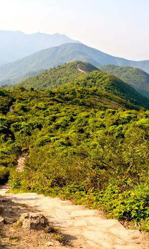 Trail in Hong Kong