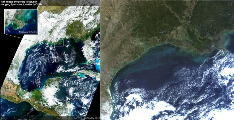 Foto 3. Modis Texas algae