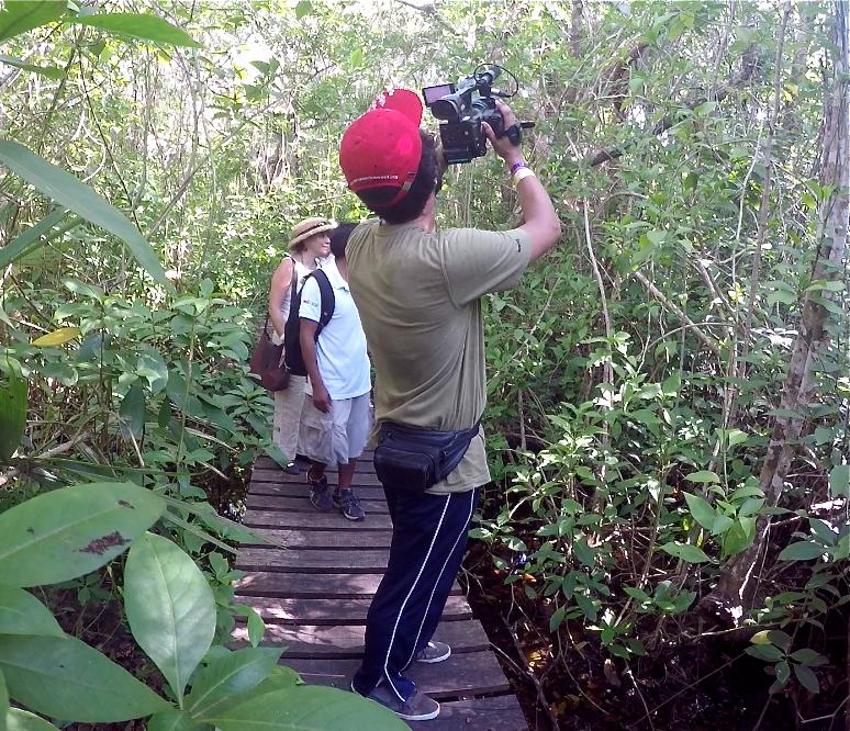 Foto 6, por la selva