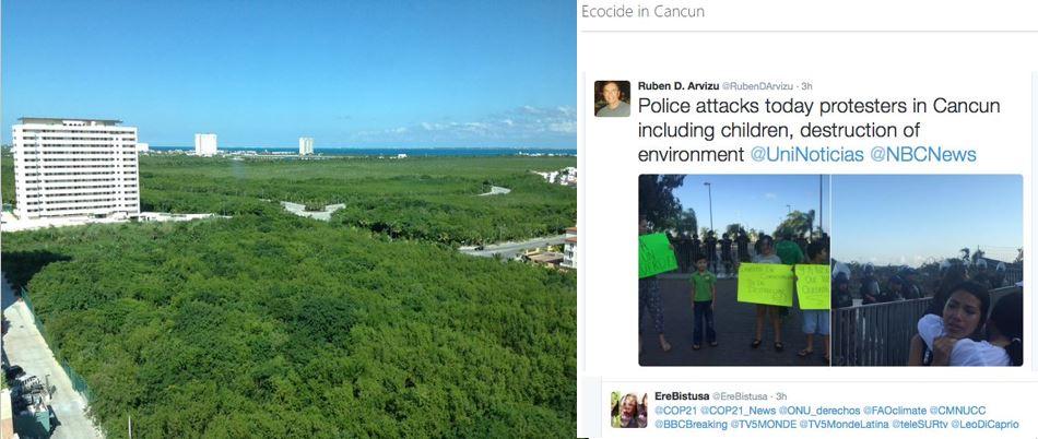 Foto 5 Ecocidio