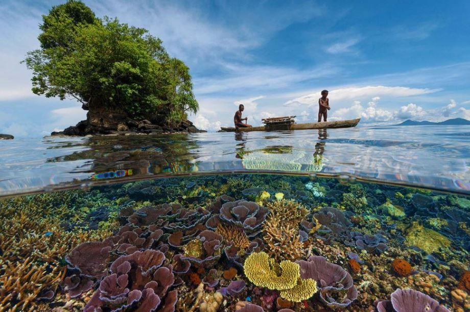 Foto 4 Great Barrier Reef