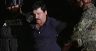 Presentación Chapo