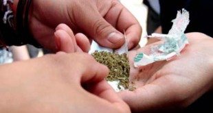 marihuana regulacion