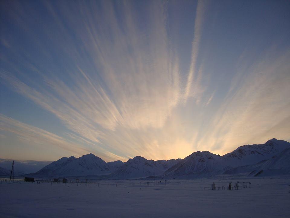 Foto 5 Artico