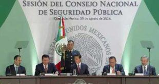 Consejo de seguridad publica