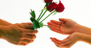 regalar-rosas