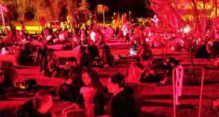 pic-nic-nocturno