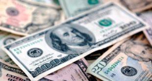 dolar-g (1)