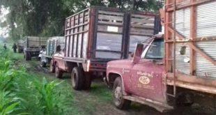 camiones-huachicoleros