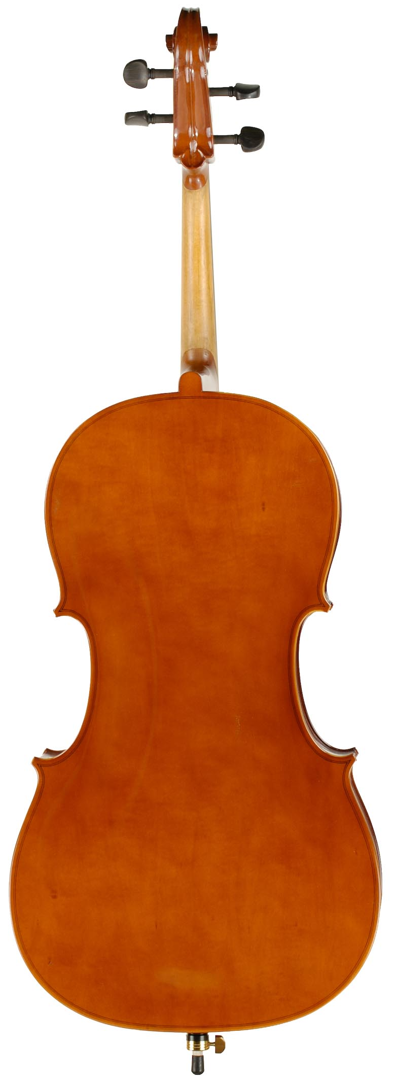 Laminate Cello Rental Back