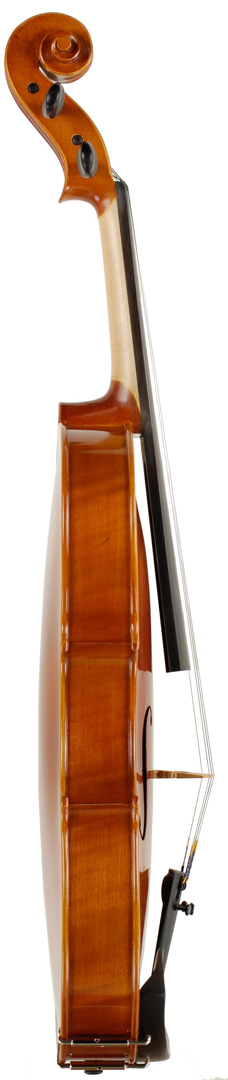 Standard Viola Rental Rib
