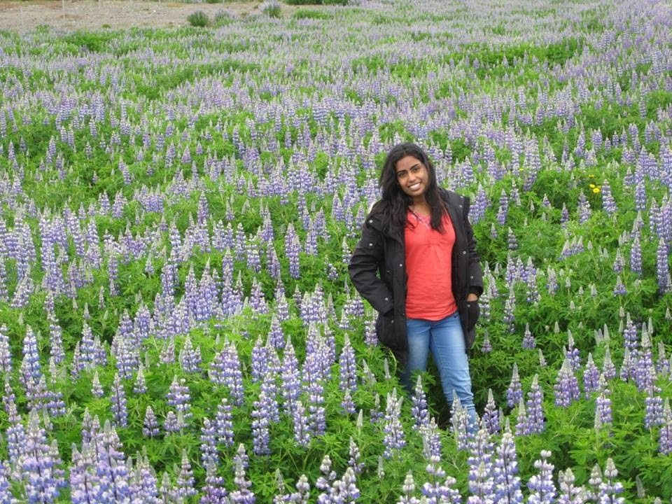 Travel Diaries: Summer in Iceland 2014