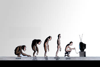 Evolution of Monkeys