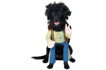 Hippie pet costume, $15.99, Target.com