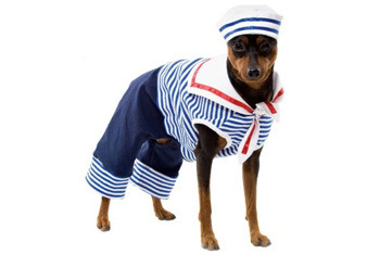 Sailor dog pet costume, $19.99, Target.com