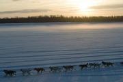 Iditarod - The Real Amazing Race