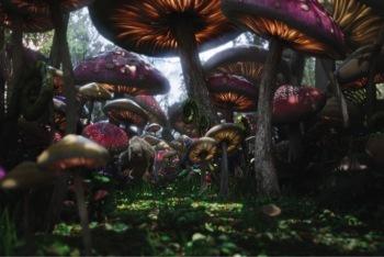 Bandersnatch in Mushroom Forest