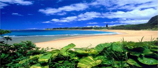 Feature beach feature
