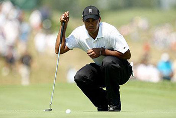 Tiger in Tough