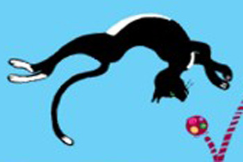 Catflip