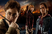 Harry Potter and The Deathly Hallows Part 2 Blu-ray Combo Pack Review
