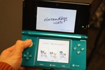 Nintendogs and cats