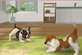 Nintendogs + Cats two dogs playing