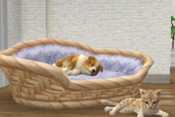Nintendogs + Cats sleeping