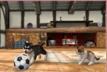 Nintendogs + Cats husky with ball