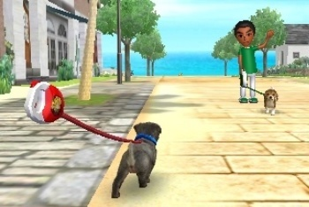 Nintendogs + Cats on a walk