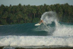 Indo 2007