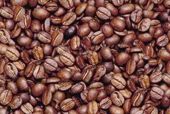 Finding a man in Coffee Beans