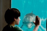 Preview dolphintale preview