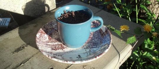 Feature feature teacupplanter