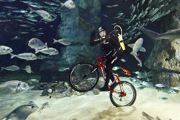 Vittorio Innocente - Deepest Cycling Underwater