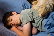 "Zachary Gordon's Summer ""Dog Days"""