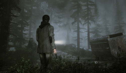 Search the haunting woods of Bright Falls, if you dare...