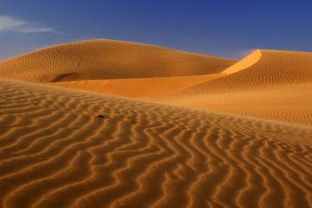 So Much Sand!
